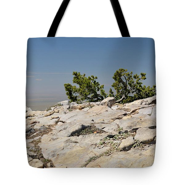 On Top Of Sandia Mountain Tote Bag