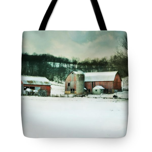 Tote Bag featuring the photograph Once Was Special by Julie Hamilton