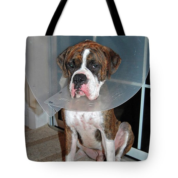 One Biffed Boxer Tote Bag by DigiArt Diaries by Vicky B Fuller
