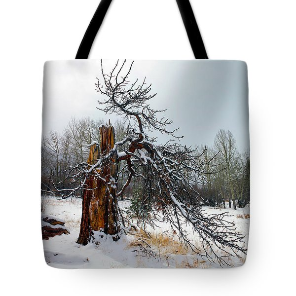 Tote Bag featuring the photograph One Branch Left by Shane Bechler