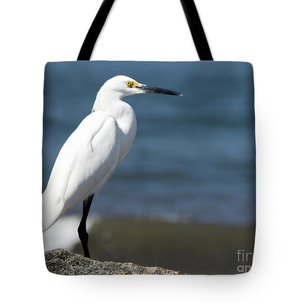 One Classy Chic Wildlife Art By Kaylyn Franks Tote Bag