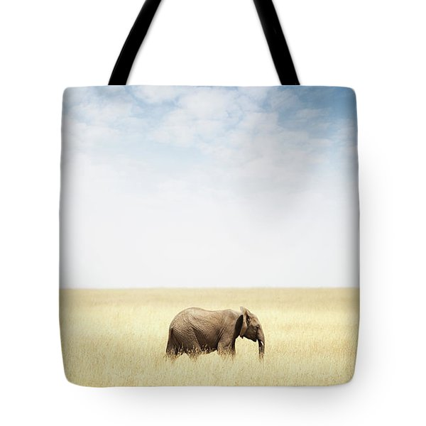 One Elephant Walking In Grass In Africa Tote Bag