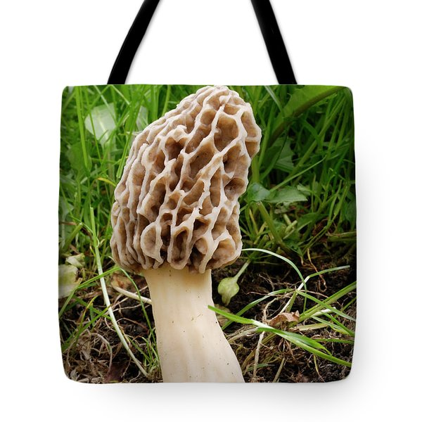 One Fine Morel Tote Bag by Randy Bodkins