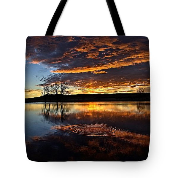 One Fish Jumps Tote Bag