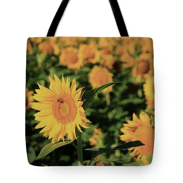 Tote Bag featuring the photograph One In A Million Sunflowers by Chris Berry