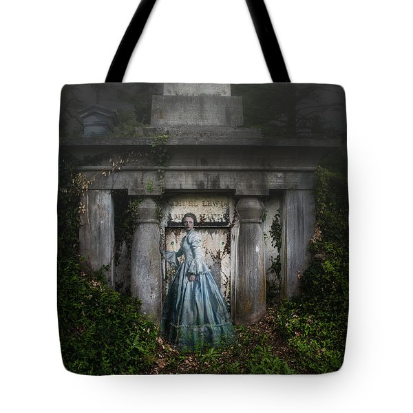 One Last Look Tote Bag by Tom Mc Nemar