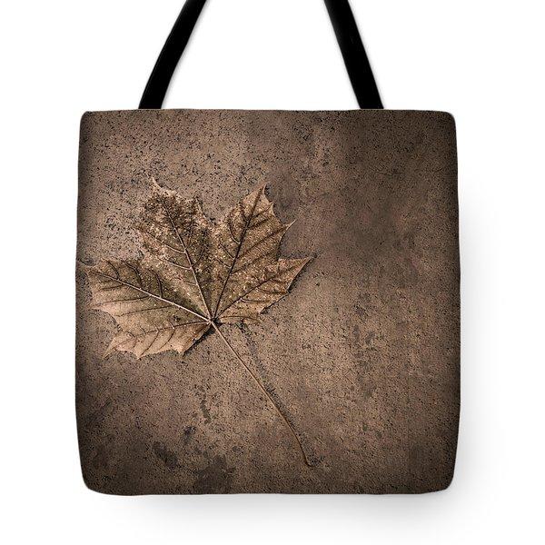 One Leaf December 1st  Tote Bag