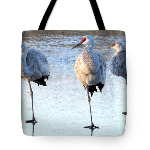 One Leg At A Time Tote Bag