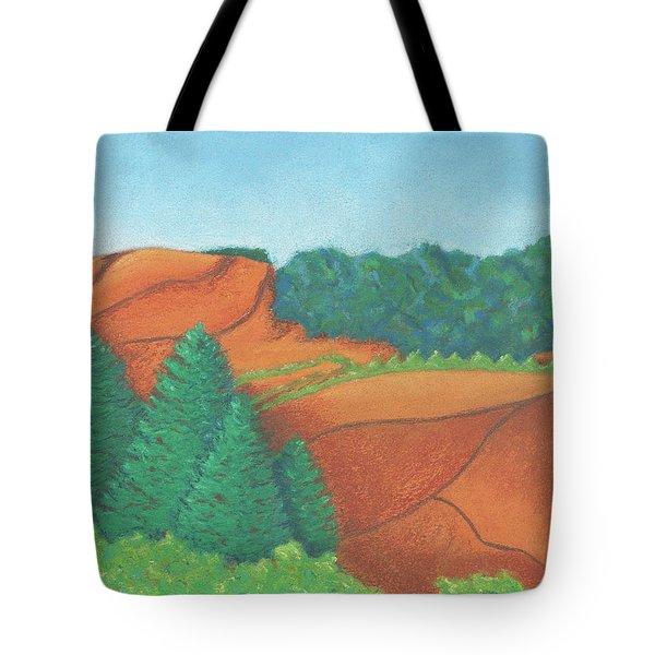 One Mesa Tote Bag