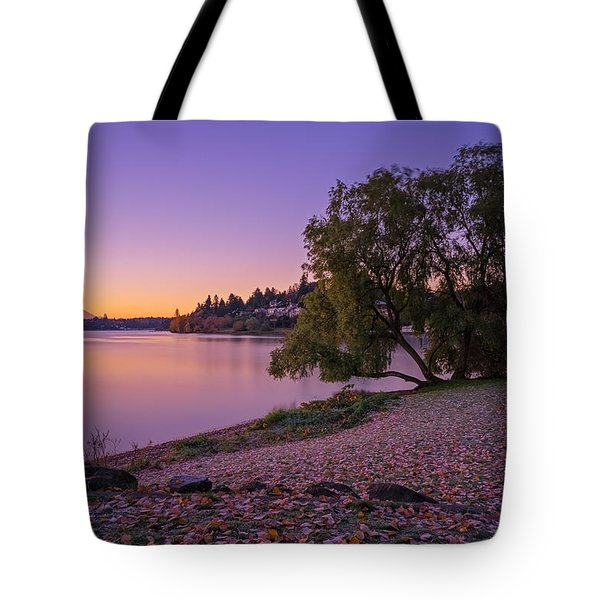 One Morning At The Lake Tote Bag by Ken Stanback