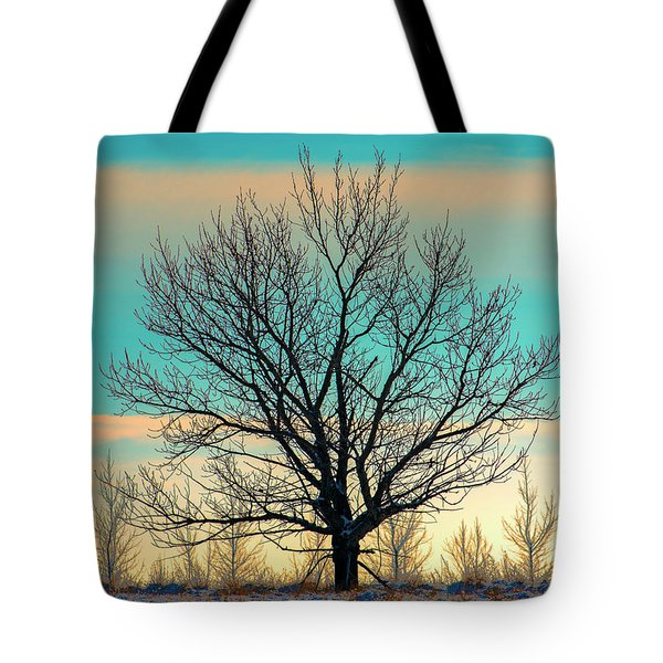 Tote Bag featuring the photograph One by Nina Stavlund