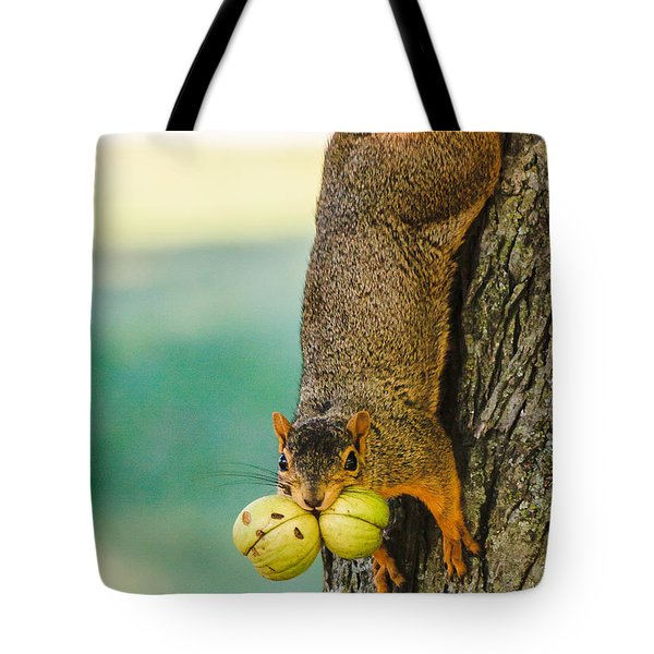 One Nut Is Never Enough Tote Bag by Joni Eskridge