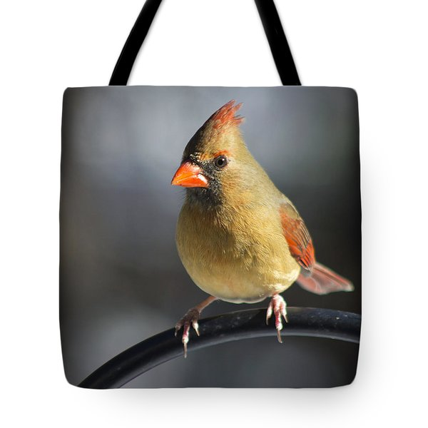 Tote Bag featuring the photograph One Of Many by Ben Shields