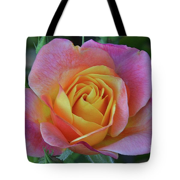 One Of Several Roses Tote Bag by Debby Pueschel
