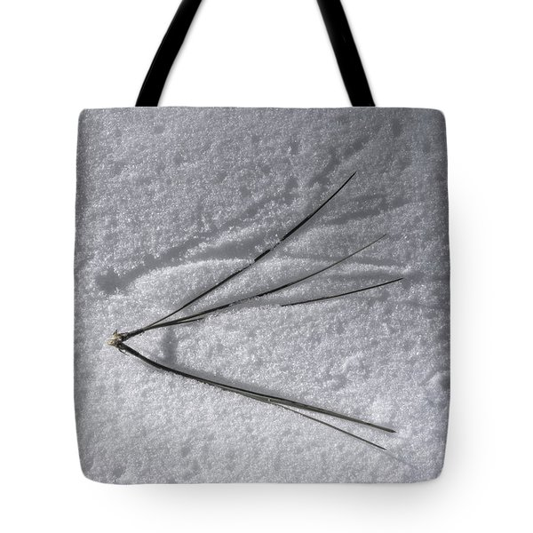 One Small Leap Tote Bag