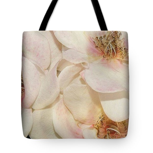 One Small Visitor Tote Bag by Reb Frost
