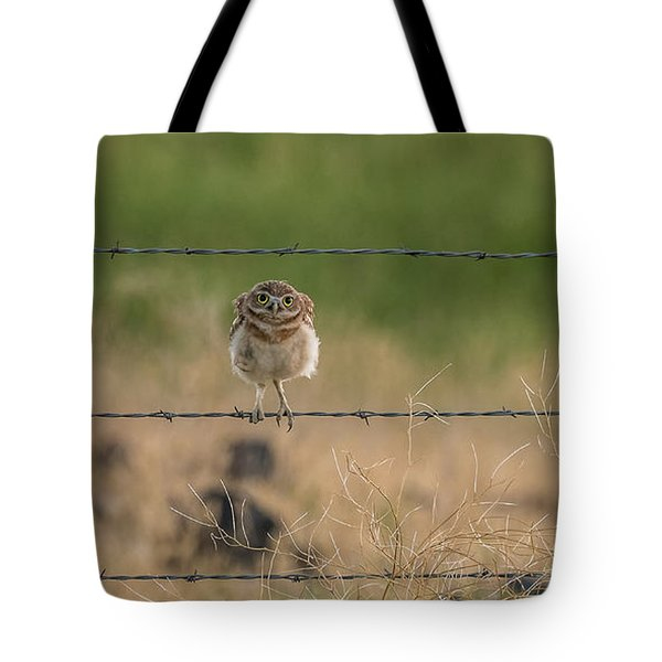 One Sweet Goodnight Tote Bag
