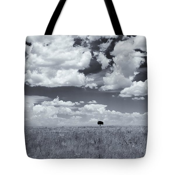 One Tree Tote Bag by Carolyn Dalessandro