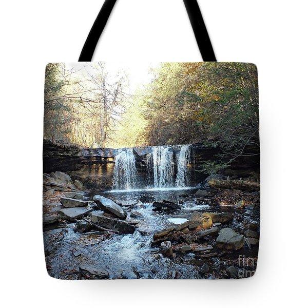 Oneida Falls 2 - Ricketts Glen Tote Bag