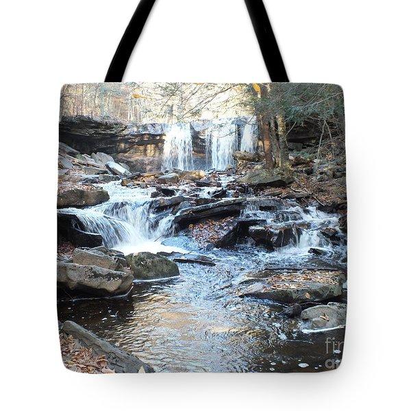 Oneida Falls 3 - Ricketts Glen Tote Bag