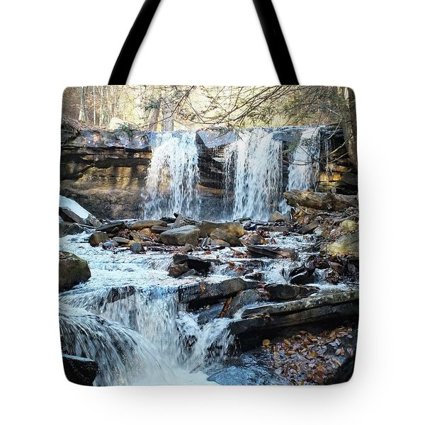 Oneida Falls 4 - Ricketts Glen Tote Bag