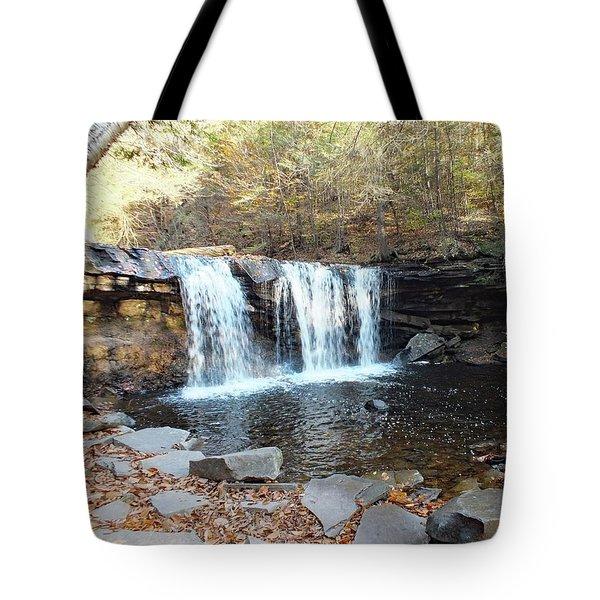 Oneida Falls - Ricketts Glen Tote Bag