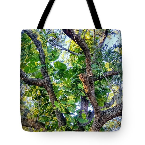 Oneness Discovery Tote Bag
