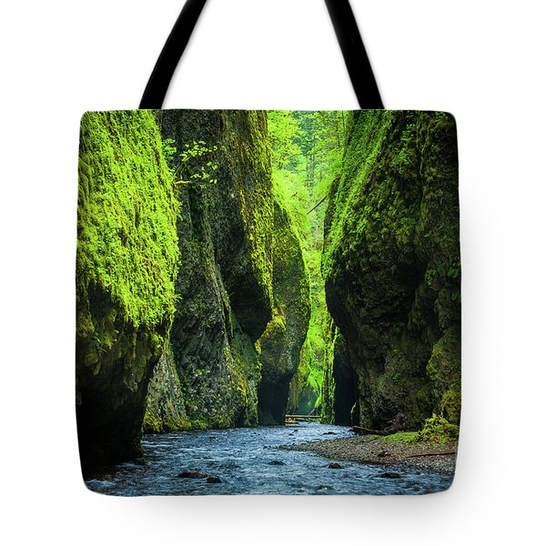 Oneonta Chasm Tote Bag