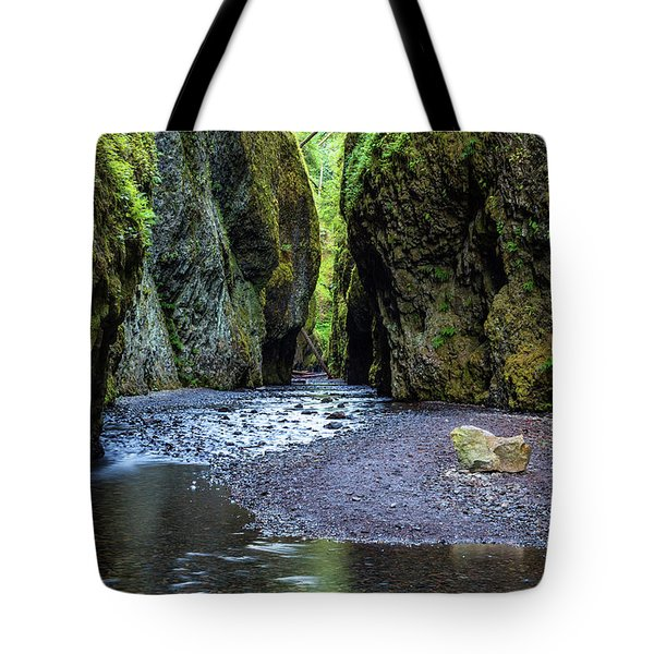 Tote Bag featuring the photograph Oneonta Gorge by Pierre Leclerc Photography
