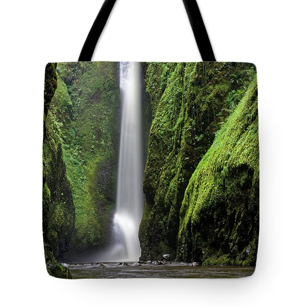 Oneonta Portrait Tote Bag