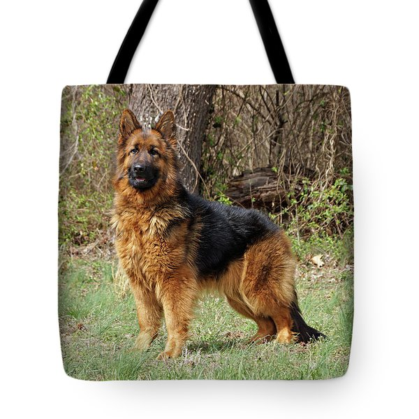 Tote Bag featuring the photograph Onja by Sandy Keeton