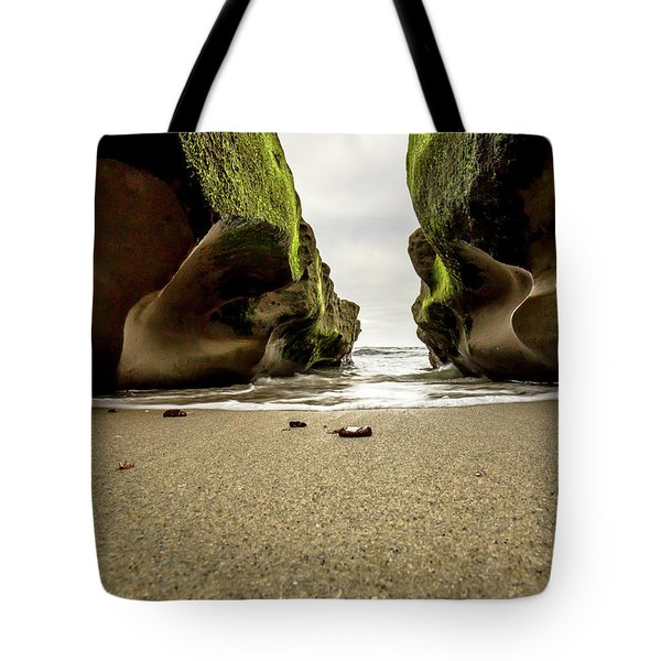 Tote Bag featuring the photograph Only At Low Tide by Ryan Weddle