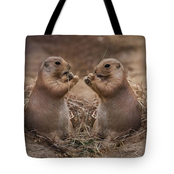 Tote Bag featuring the photograph Only Hearts II by Robin-Lee Vieira