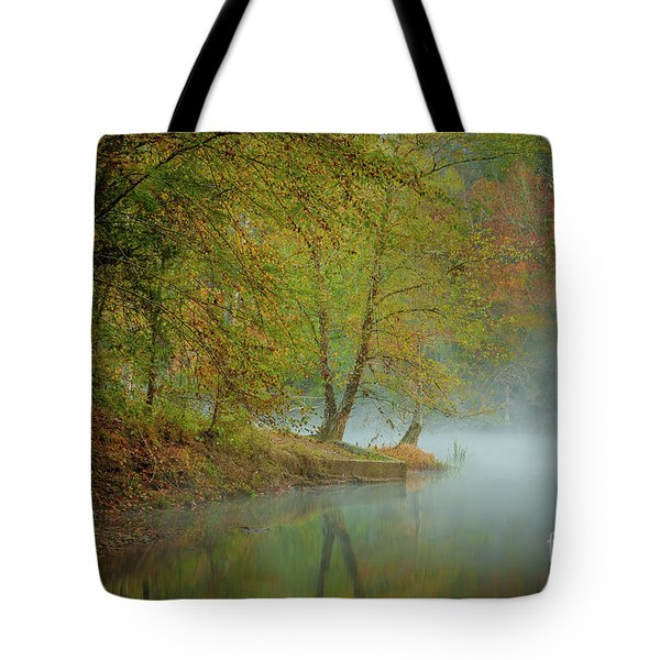 Tote Bag featuring the photograph Only If I Go by Iris Greenwell