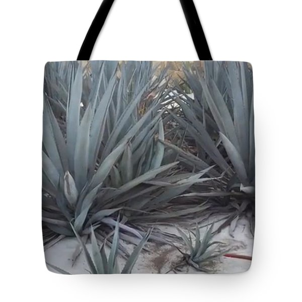Tote Bag featuring the photograph Only Missing A Mule  by Cindy Charles Ouellette