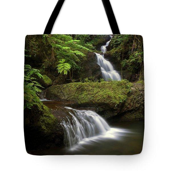 Onomea Falls Tote Bag