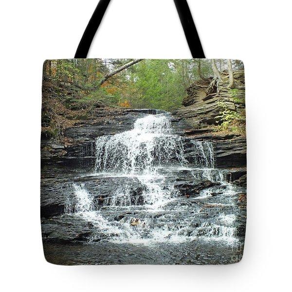 Onondaga 4 - Ricketts Glen Tote Bag
