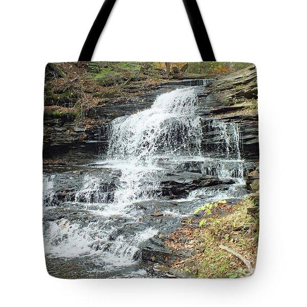 Onondaga 6 - Ricketts Glen Tote Bag