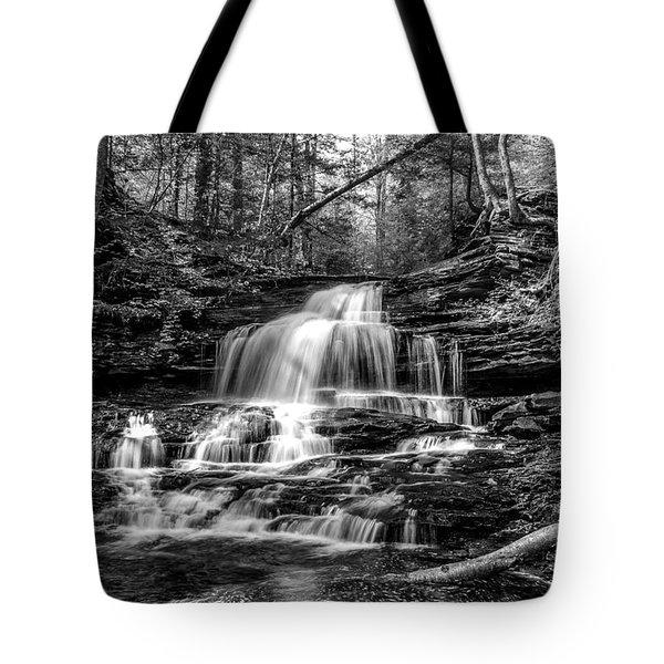 Onondaga Falls - 8923 Tote Bag