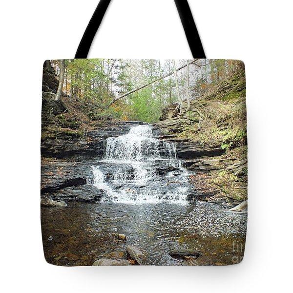 Onondaga - Ricketts Glen Tote Bag
