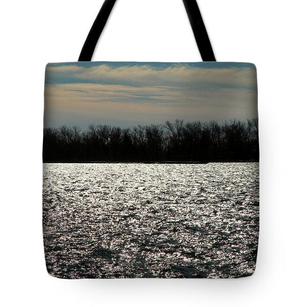 Tote Bag featuring the photograph Ontario Winter Reflections by Valentino Visentini