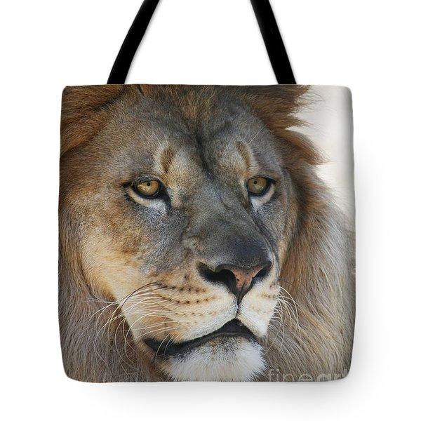 Onyo #3 Tote Bag