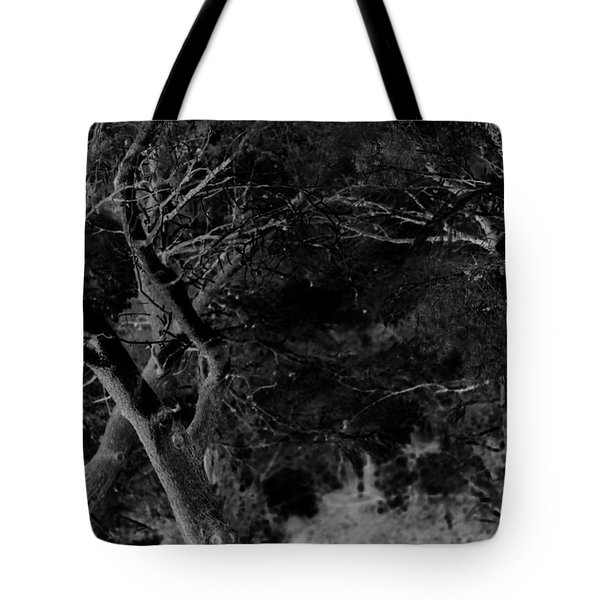 Oooooh, Do You Hear Me Tote Bag by Danica Radman