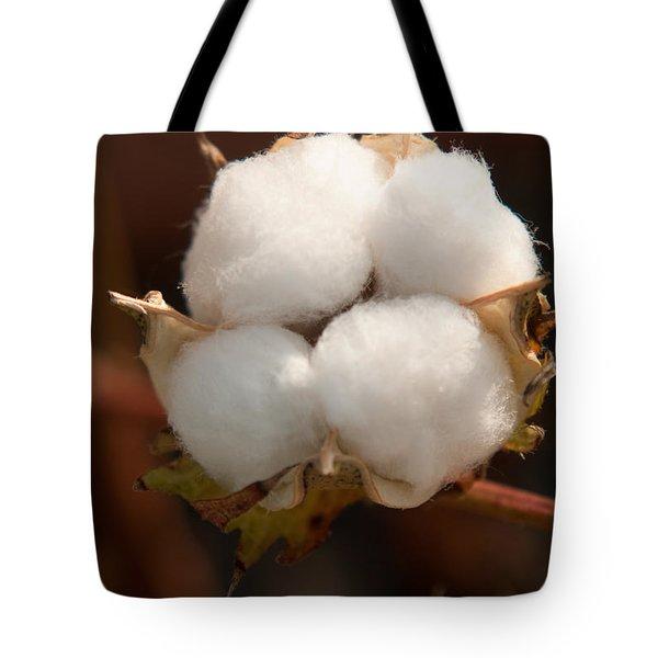 Open Cotton Boll Tote Bag by Douglas Barnett