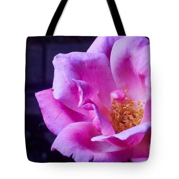 Open Rose Tote Bag
