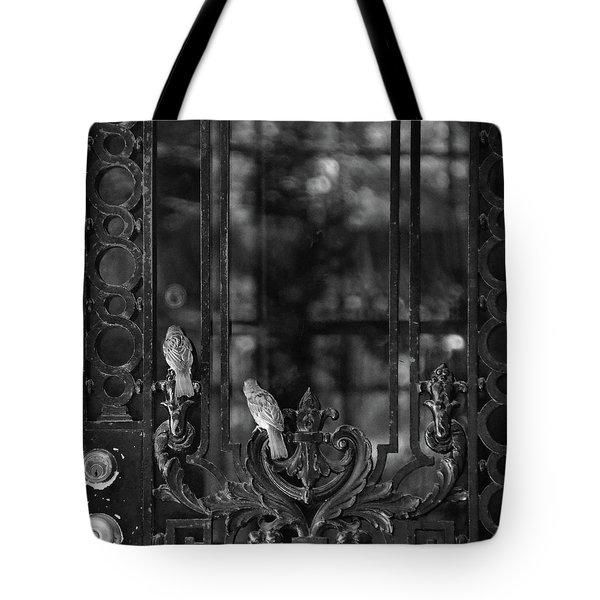 Open The Door Tote Bag