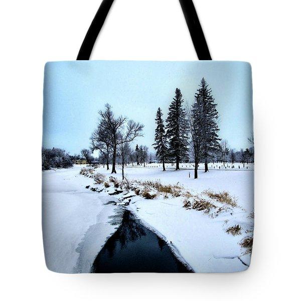 Open Waters Tote Bag