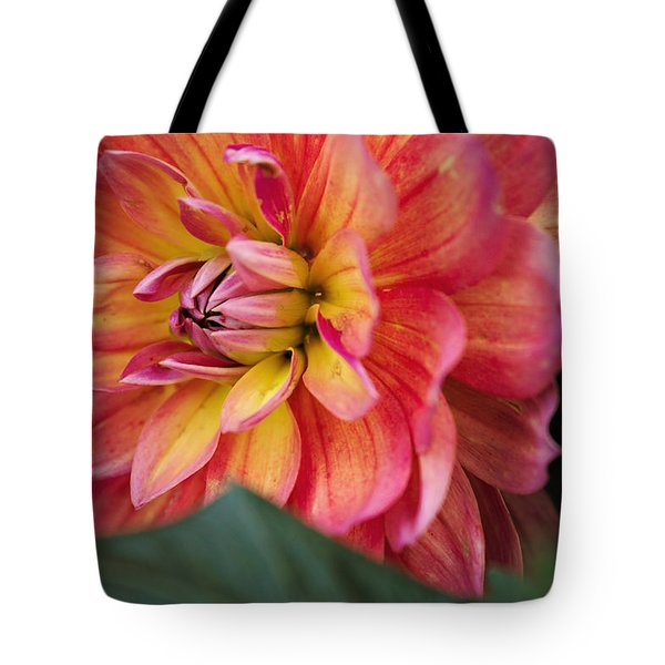 Tote Bag featuring the photograph Opened To The World by Cendrine Marrouat