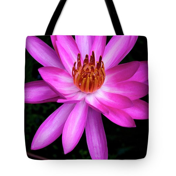 Opening - Early Morning Bloom Tote Bag