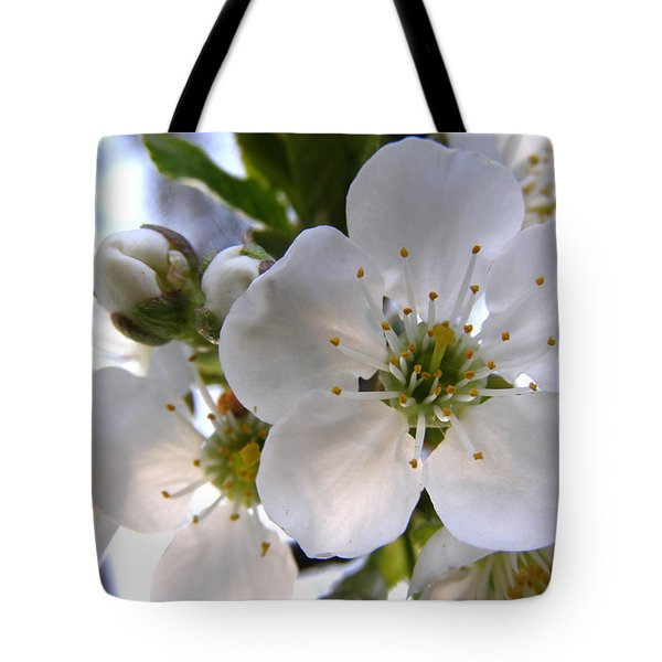 Tote Bag featuring the photograph Opening Act -  Cherry Blossoms by Angie Rea